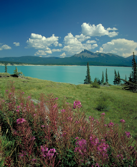 Abraham Lake in West Central Alberta, 1.25 hour drive from The Prairie Creek Inn