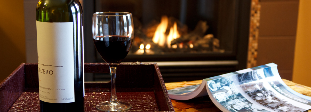 Enjoy a book and a glass of wine in front of the fire