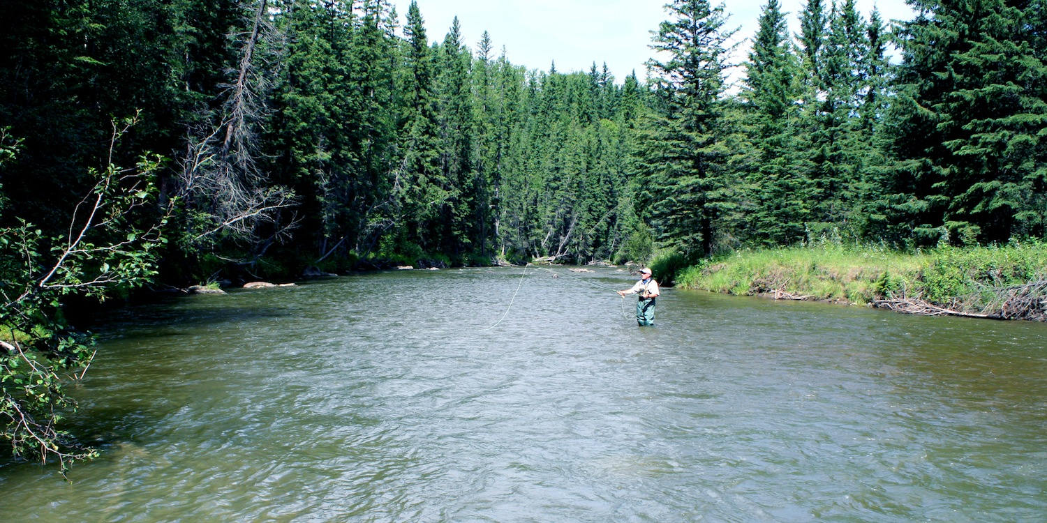 Fly Fishing on Prairie Creek ~ The Priarie Creek Inn
