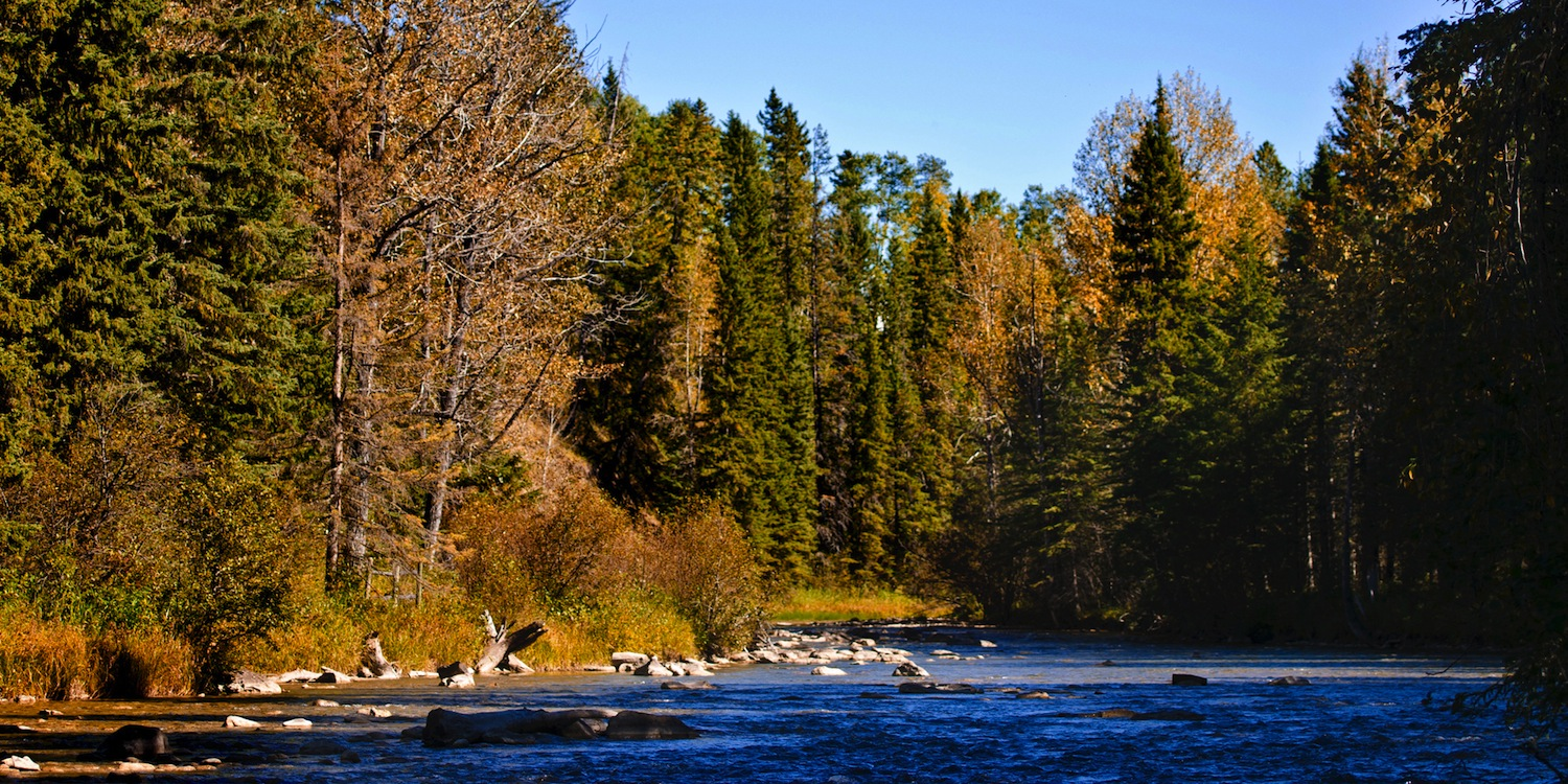 header-pictures-the-prairie-creek